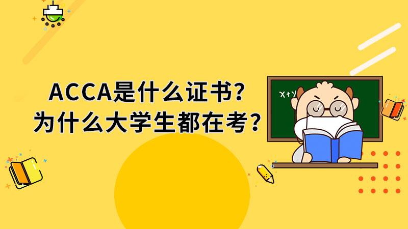 ACCA是什么证书?为什么大学生都在考?